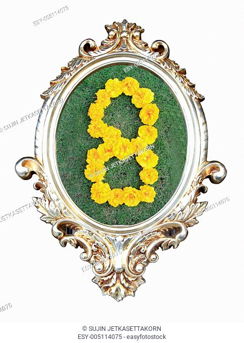 flowers number in a frame of on green grass background