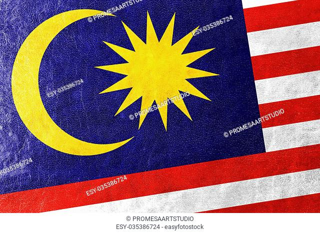 Malaysia Flag painted on leather texture