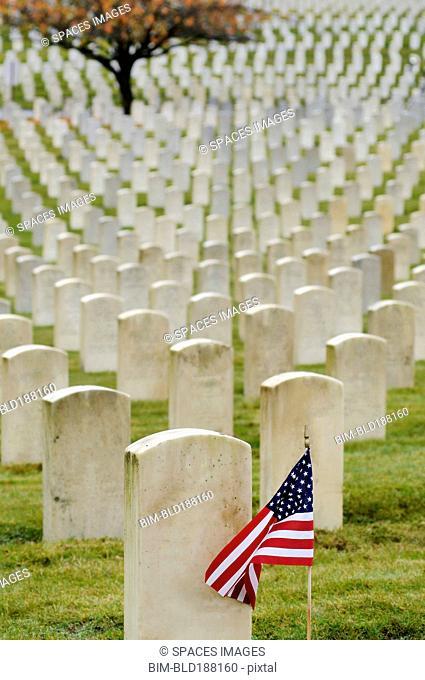 American flag planted in veteran cemetery