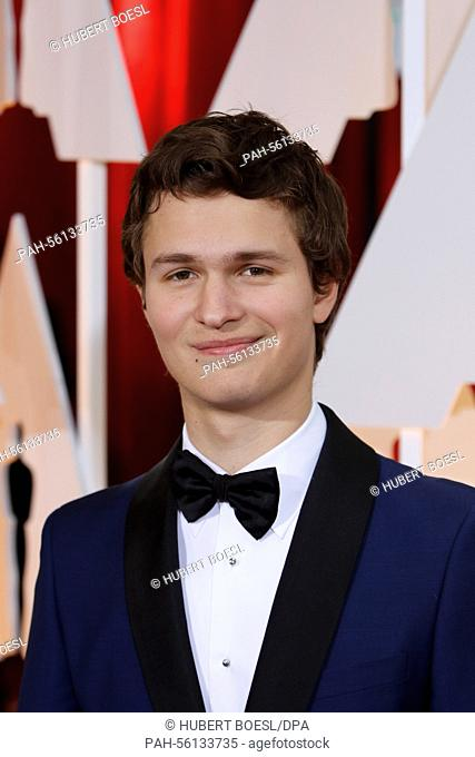 Actor Ansel Elgort attends the 87th Academy Awards, Oscars, at Dolby Theatre in Los Angeles, USA, on 22 February 2015. Photo: Hubert Boesl /dpa -...