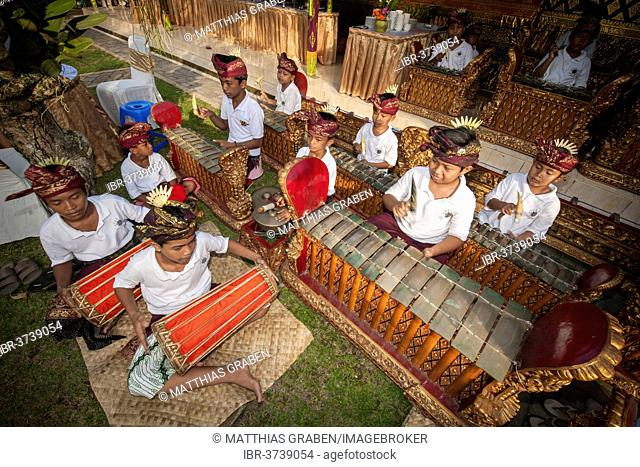 Children and teenagers of a gamelan orchestra at an event, Ubud, Bali, Indonesia