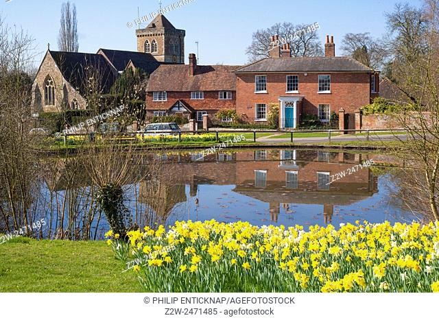 View to chiurch over village pond in Springtime with daffodils in foregroud
