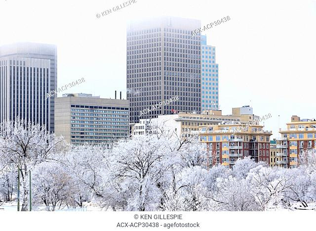 Downtown Winnipeg skyline on a frosty winter day. Winnipeg, Manitoba, Canada