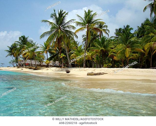 Seaside palm grove on the sandy beach of San Blas Islands, Panama, Central America