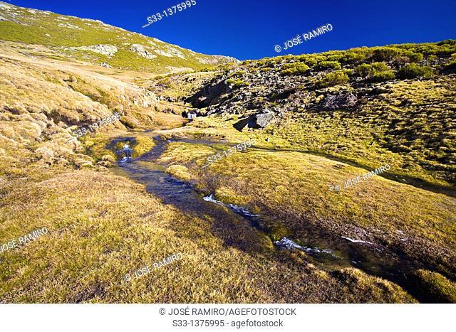 Streams in the Prados de la Centenera  Sierra de Gredos  Ávila  Castilla León  Spain