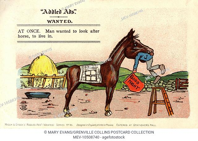 Addled Ads - WANTED: AT ONCE. Man wanted to look after horse, to live in