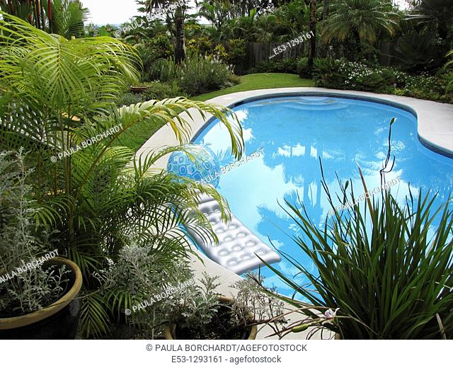 Swimming pool, backyard, and tropical foliage, Orchid Tree Bed and Breakfast, Hilo, Hawaii, USA
