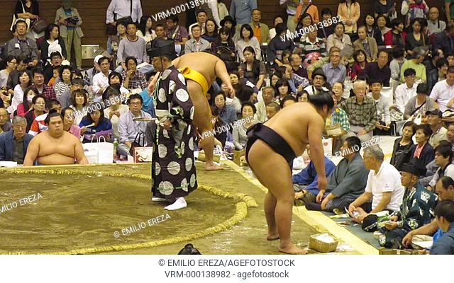 Sumo fight at Saitama, Saitama Prefecture