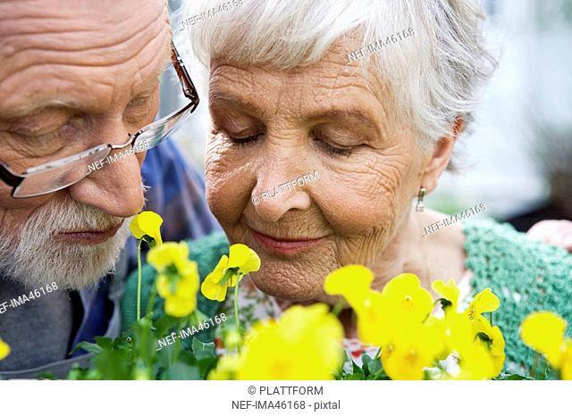 An elderly Scandinavian couple Sweden close-up