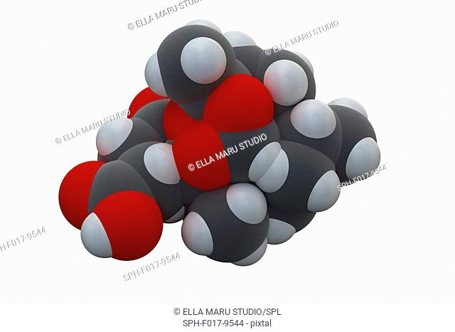 Artesunate malaria drug molecule. Chemical formula is C19H28O8. Atoms are represented as spheres: carbon (grey), hydrogen (white), oxygen (red)