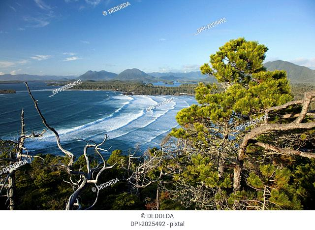 the view of cox bay and surrounding mountains and temperate rainforest near tofino, british columbia canada