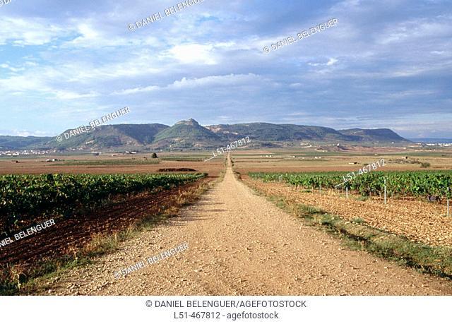 Road in the fields. Titaguas. Los Serranos. Valencia province. Spain