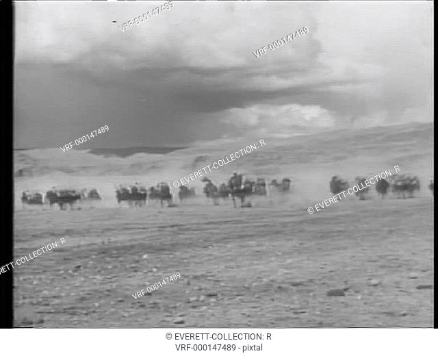 Wide angle view of Moroccan cavalry charging through desert