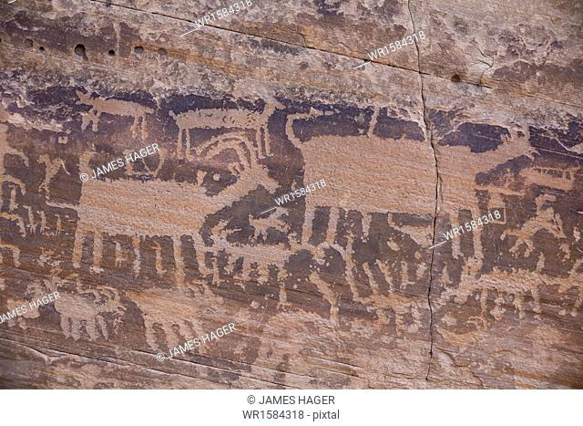 Petroglyphs on the Kohta Circus petroglyph panel, Gold Butte, Nevada, United States of America, North America
