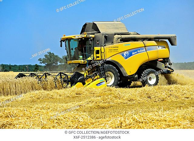 Combine Harvester New Holland CX8080 harvesting winter wheat, Canton Geneva, Switzerland