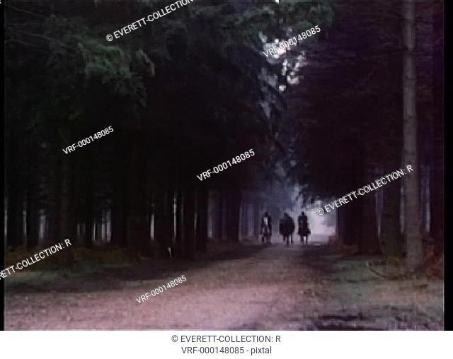 Men on horseback riding through forest
