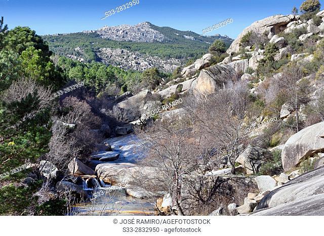 Camorza gorge in the Pedriza. Regional Park del Ato Manzanares. Manzanares el Real. Madrid. Spain. Europe