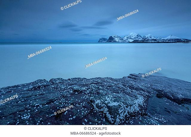 View of the cold sea and snowy mountains from a rock. Myrland. Lofoten Islands Northern Norway Europe