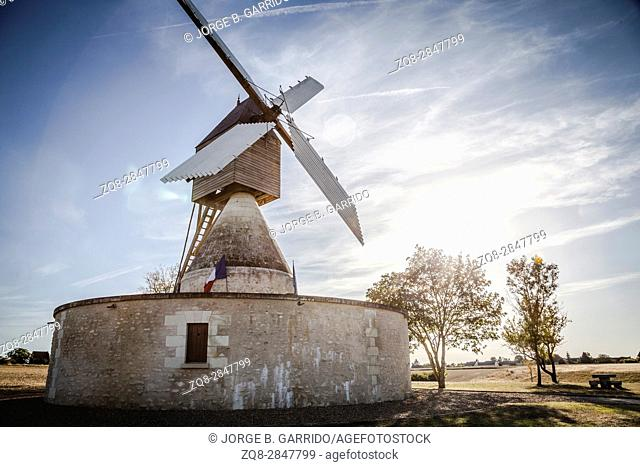Windmill and vineyard near Montsoreau, Pays-de-la-Loire, France