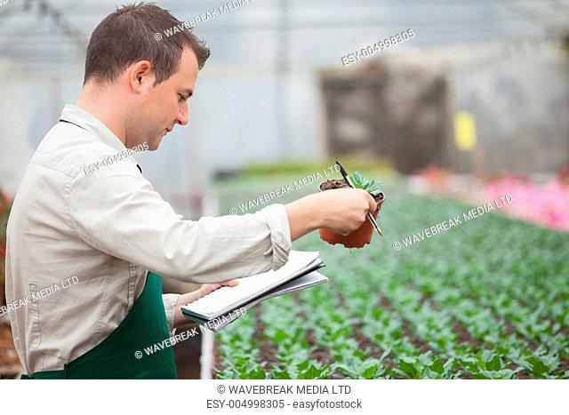 Man standing in greenhouse nursery and taking notes