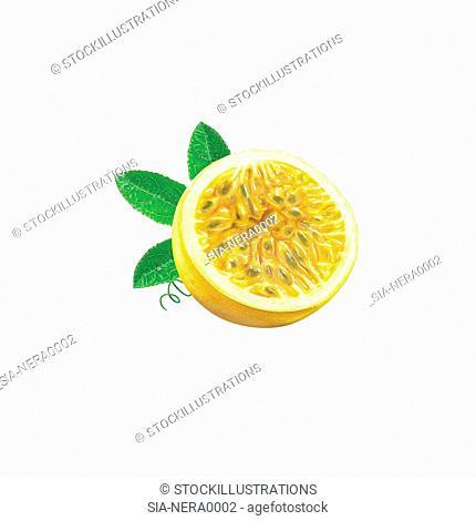 Close up of half of lemon on white background