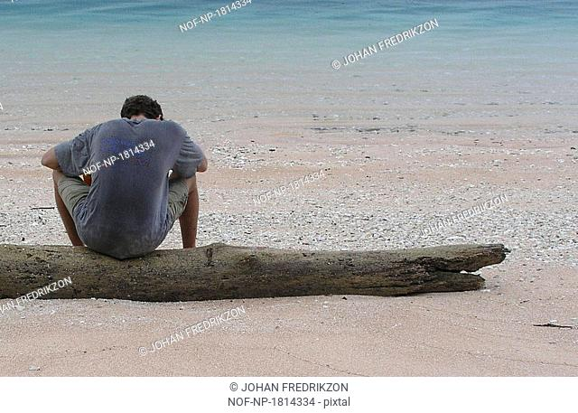 Rear view of a man sitting on a log