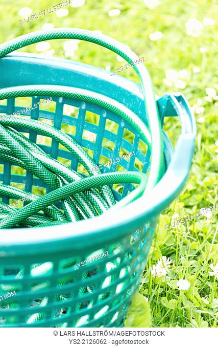 Close up of garden hose on green grass