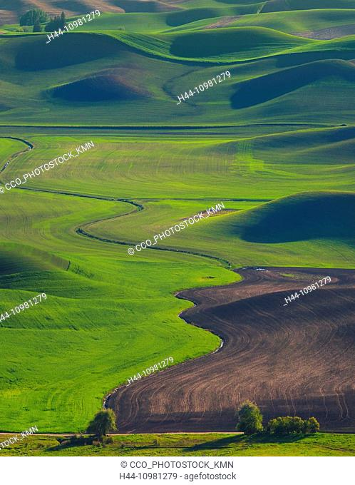 rolling hills in Palouse