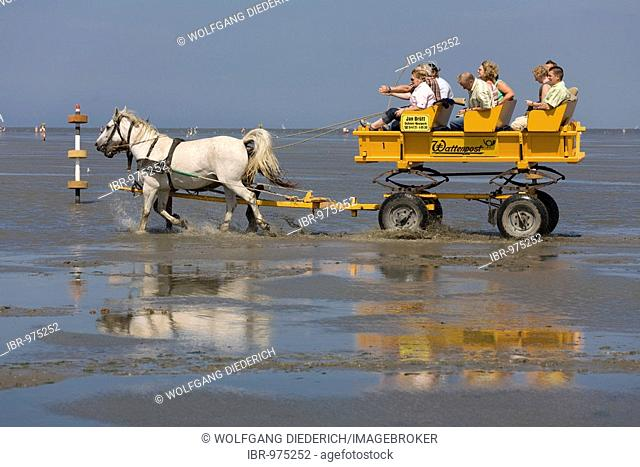 Horse drawn taking tourists from Cuxhaven-Duhnen through the North Sea mud to the island of Neuwerk, Cuxhaven-Duhnen, Lower Saxony, Northern Germany, Europe