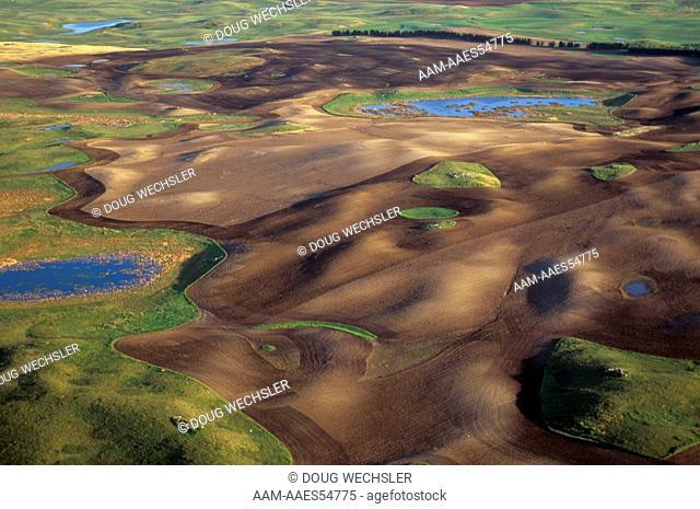 Prairie Potholes, aerial, Missouri Coteau, Ward Co., North Dakota