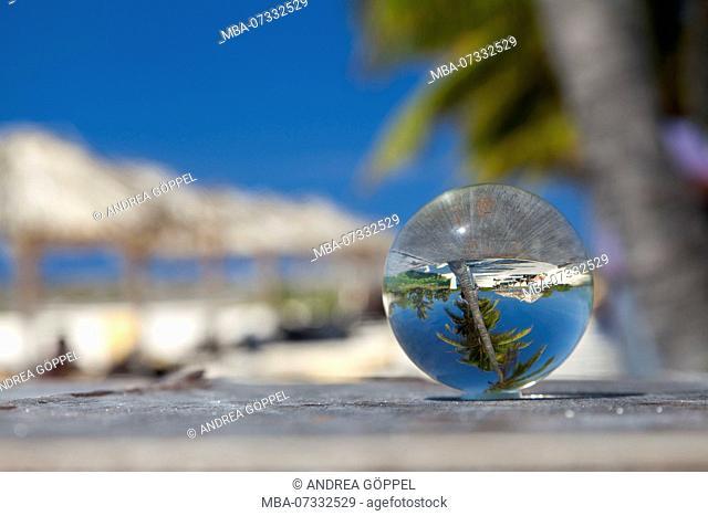 Caribbean, Cuba, Cayo Santa Maria, Caribbean beach with palm trees in glass ball
