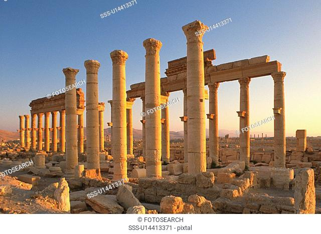 Columns from the site of Palmyra, Syria, Low Angle View