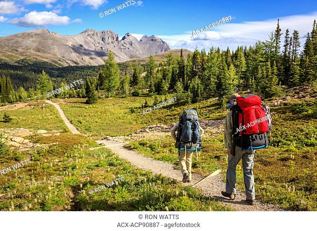 Two back packers hike the Citadel Pass trail from Sunshine Meadows along the Great Divide in Banff National Park, Alberta, Canada. Model Released