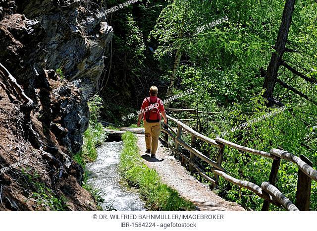 Bergwaal, Schluderns, Vinschgau, Val Venosta, South Tyrol, Italy, Europe