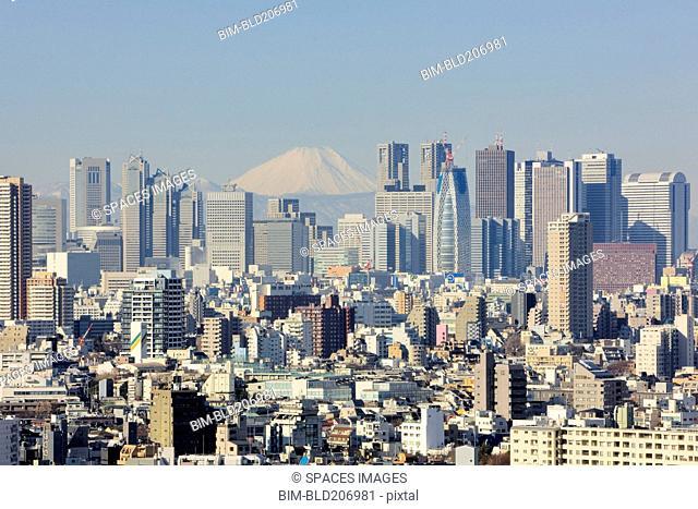 Shinjuku Skyline with Mt Fuji