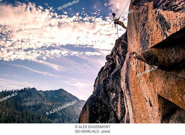Young male rock climber on rock face, High Sierras, California, USA