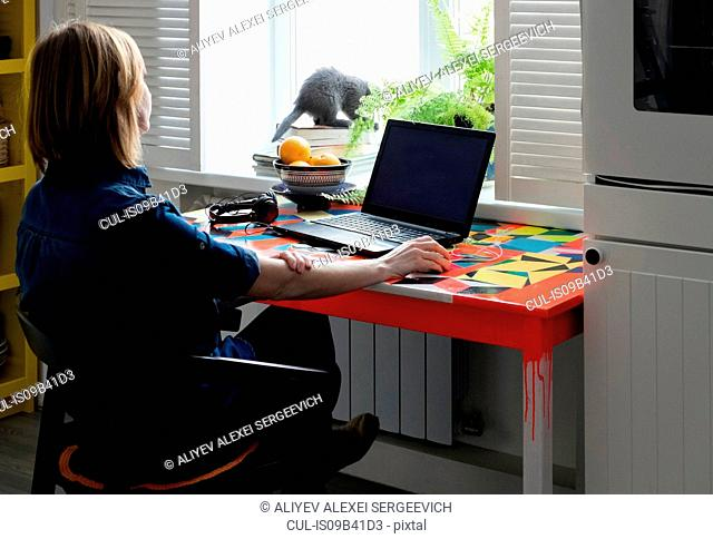 Woman sitting at table watching kitten on windowsill