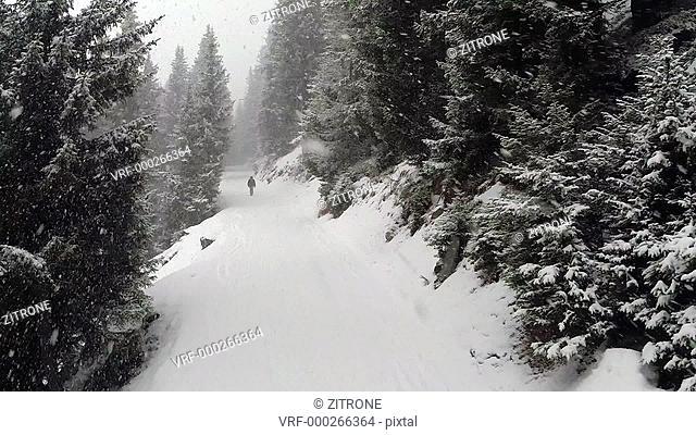 Rear view of person walking in snow, Verbier, Valais, Switzerland
