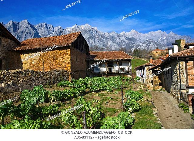 Mogrovejo, valley of Liebana, east massif of Picos de Europa National Park, Cantabria, Spain