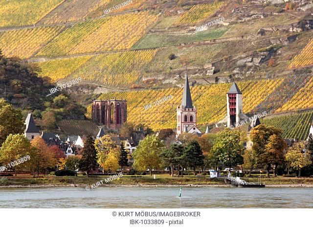 View of the Rhine River and the town of Bacharach, Rhenish Hesse, UNESCO World Heritage Site Upper Middle Rhine Valley, Rhineland-Palatinate, Germany, Europe