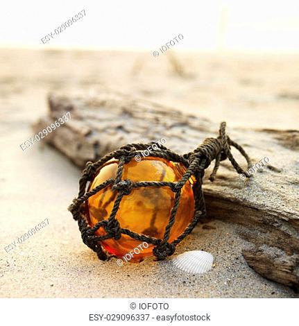 Glass globe net float with driftwood on beach
