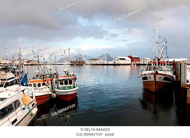 Fishing boats, Svolvaer, Lofoten Islands, Norway