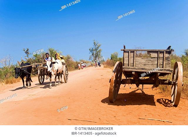 Malagasy people on a red road, Morondava, Madagascar, Africa