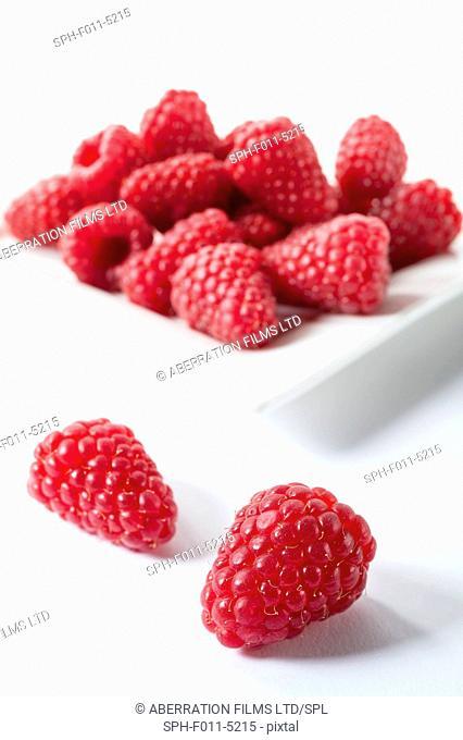 Raspberries, studio shot