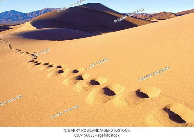 Footprints in Sand dunes. Nevada. USA
