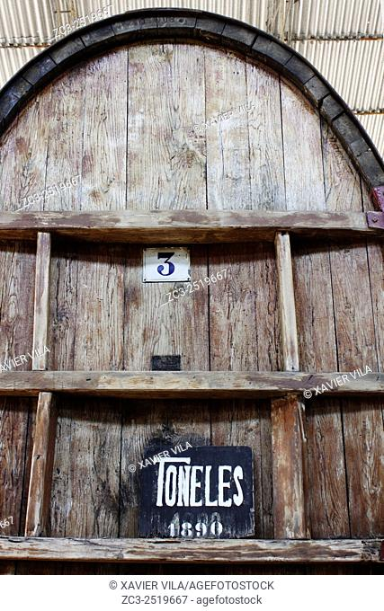 Oak barrel for Pisco Conservation Tacama. In the decade of the 1540 s Francisco de Carabantes created The Tacama Vineyard, which is the oldest in Peru