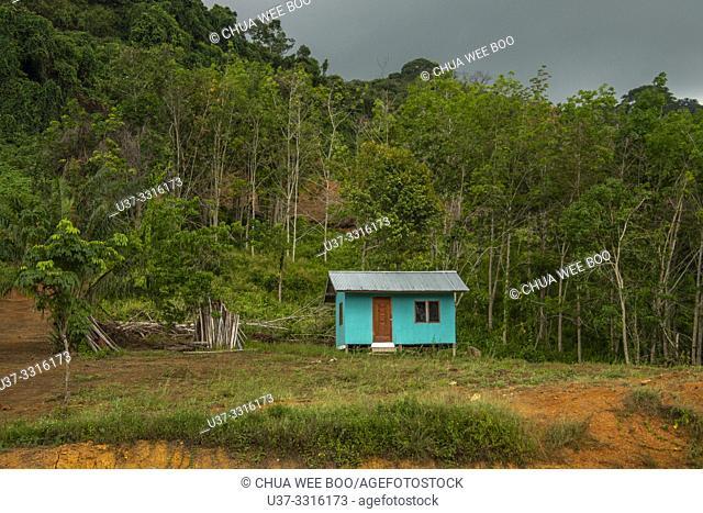 A green house on hill slope along the highway of Telok Melano, Sematan, Sarawak, Malaysia