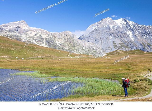 Lac du Plan du Lac in the National Park of La Vanoise, Savoie, Rhône-Alpes, France