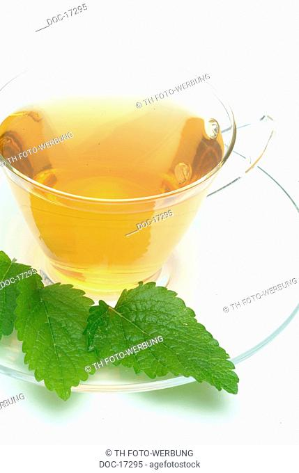 medicinal tea made of Balm - Lemon Balm - Sweet Balm - fresh leaves and cup of tea - herb - medicinal plant - Citronella - Melissa vera - te