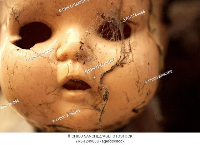 A doll covered with spider web hangs on a tree on the Island of the Dolls in Xochimilco, southern Mexico City. The late Don Julian turned his 'chinampa